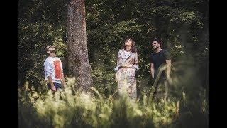 Moonlight Breakfast - Bonjour [Feat. Sunetele Padurilor for Greenpeace 2018]