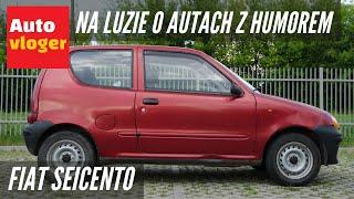 Fiat Seicento - na luzie