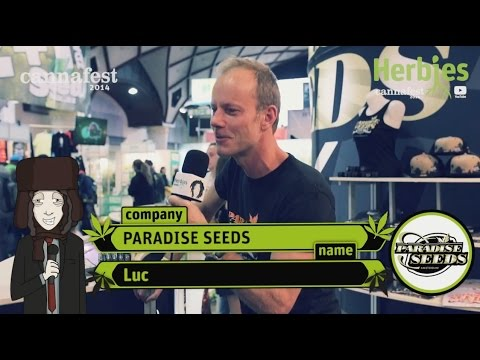 Paradise Seeds @ Cannafest 2014 Prague