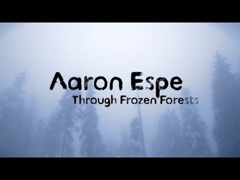aaron-espe-through-frozen-forests-lyric-video-nettwerkmusic