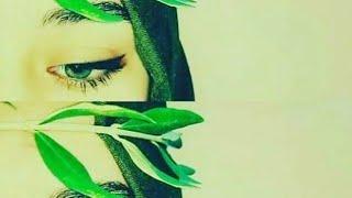New Ringtone 33:DJ Snake - Taki Taki ft. Selena Gomez, Ozuna, Cardi B