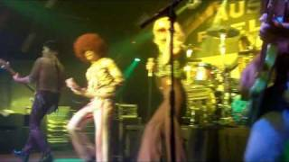 The Shagadelics - A Funky 70s Disco Tribute Cover Band From Chicago