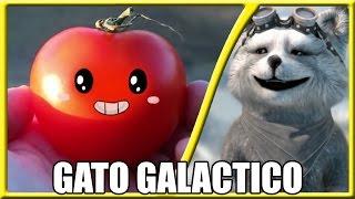 #REACT - COISAS COM CARINHAS 2 (Gato Galactico)
