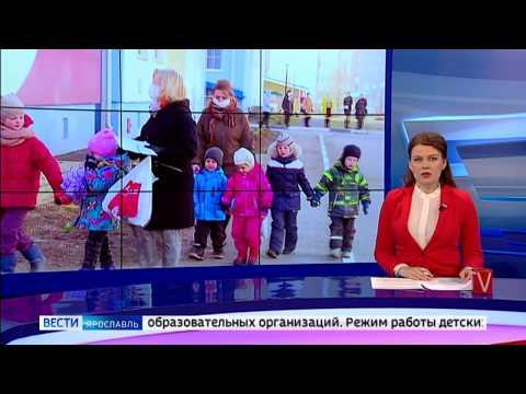 В Ярославской области режим работы детских садов и школ не меняется