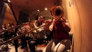 Into the wild - Anne Van Steenwinkel feat. Arte Musicale