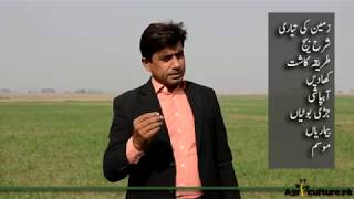 Wheat Production Technology Part -1