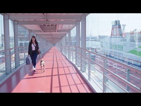 Stena Line -  Mit dem Hund an Bord der Fähre