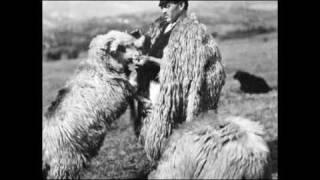 Sârbă ciobănească / Pastoral dance