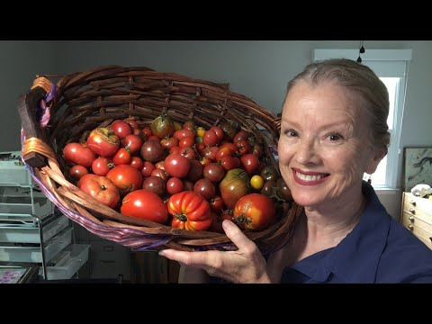 Let's TALK about TOMATOES!