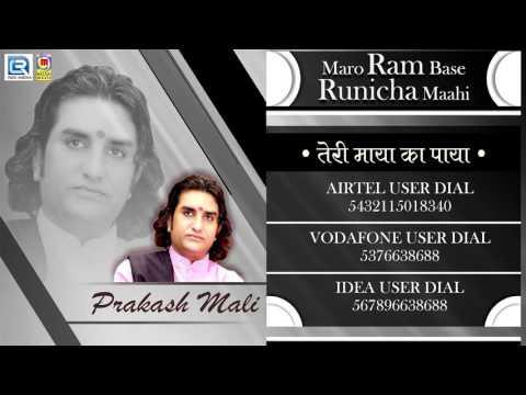 तेरी माया का पाया - रामदेवजी New Bhajan | Prakash Mali 2017 Hits | Audio Song | Rajasthani Songs