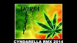 CYNDARELLA RMX 2014 - AndreA dJ - AFRO 2014