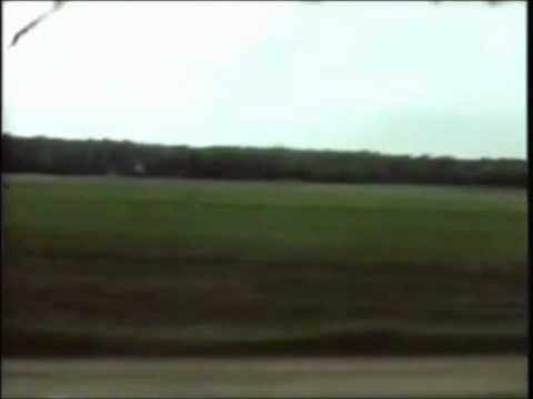 spinvis-ronnie-gaat-naar-huis-2002-dutch-music-channel