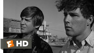 The Last Picture Show (5/8) Movie CLIP - The Death of Sam the Lion (1971) HD