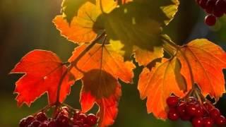 """Sergey Grischuk """"Leaving Autumn"""""""