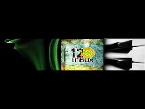 Saltitos de 12 Tribus Letra y Video