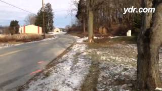 Fatal crash in Windsor Township: On Saturday, two teens died when a vehicle crashed into this tree.