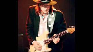Honey Bee-Stevie Ray Vaughan and Double Trouble