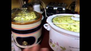 Canning Applesauce (simplified) September 2013
