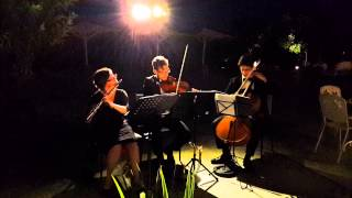 HIRE FLUTE - VIOLIN - CELLO TRIO FOR PARTY - שלישייה של חליל-כינור-צ'לו  לאירוע, לקוקטייל