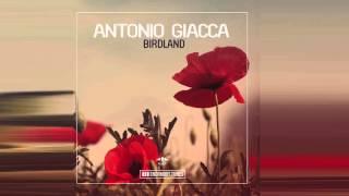Antonio Giacca - Birdland (Radio Mix)