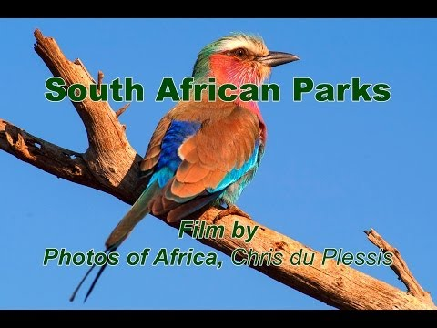 SAN Parks – South Africa Travel Channel 24