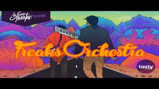 The Noisy Freaks - Freaks Orchestra (Original Mix)