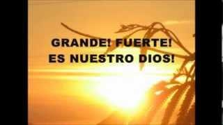 GRANDE Y FUERTE - MIEL SAN MARCOS