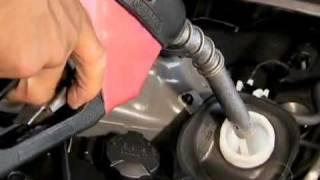 Carros flex precisam ter um pouco de gasolina no reservatório