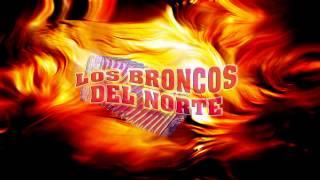 otro corrido mas para la raza de Oaxaca .......El Corrido De Mario-Los Broncos Del Norte