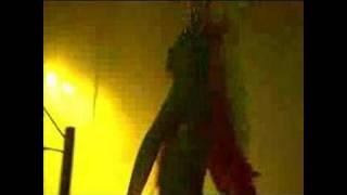 "Dj Tiesto ""Brotherhood - Samba In The Hood"