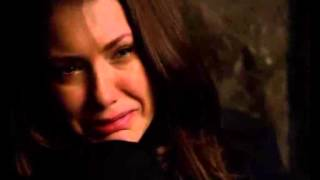 Diaros de um vampiro Final a morte de damon 5 temporada final