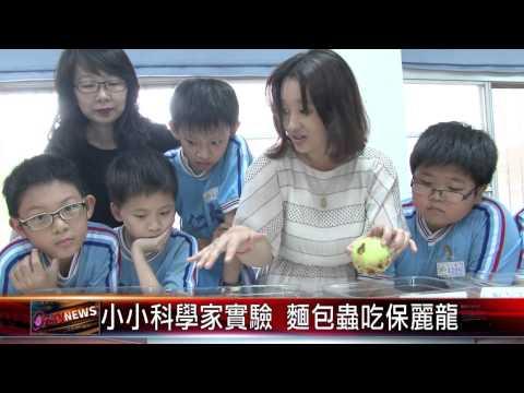 20150421 小小科學家實驗 麵包蟲吃保麗龍 - YouTube