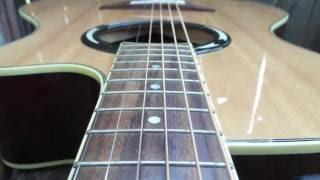 Fleetwood Mac - Sara - Stevie Nicks - Acoustic Guitar Classic Rock Instrumental - Roger Lopez