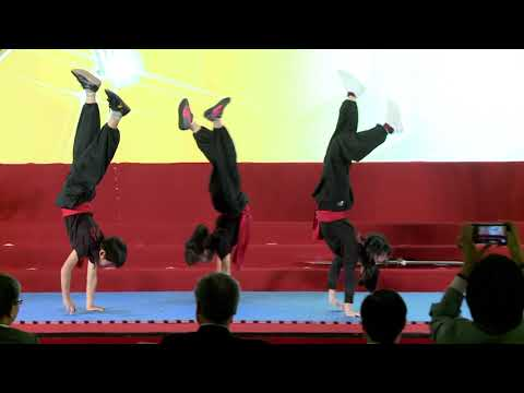 106年節約能源表揚大會 中場表演新北市插角國小武術表演