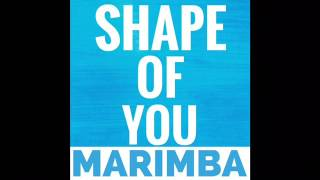 Shape of you marimba remix