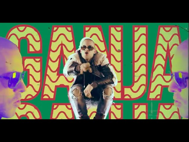 Videoclip oficial de la canción Legal Now de Collie Buddz
