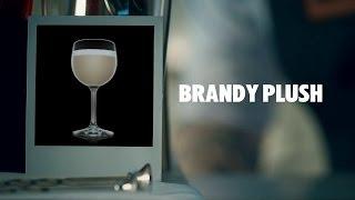 BRANDY PLUSH DRINK RECIPE - HOW TO MIX