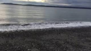 Bay where Temple of Dog Hunger Strike Video filmed 2016 Seattle