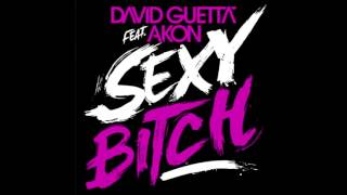 David Guetta feat Akon : Sexy Bitch