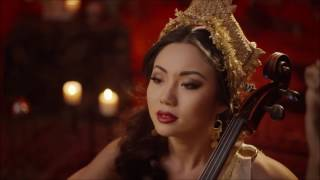 Now We Are Free - Gladiator Main Theme - Tina Guo