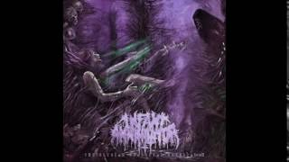 Infant Annihilator - Neonatalimplionecrophiliation