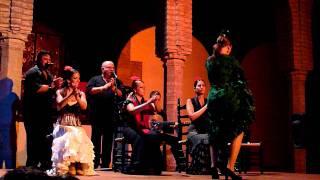 Flamenco à Cordoba