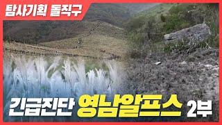 [탐사기획 돌직구] 긴급진단 영남알프스-2부 다시보기