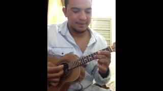 Vish - Turma do Pagode (cover by Cisca do Cavaco)