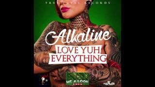 Alkaline - On Fleek (Love Yuh Everything) (Clean) (Official Audio) | Dancehall 2015 | 21st Hapilos