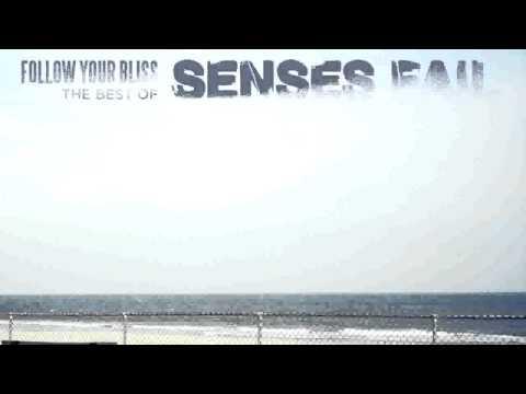 senses-fail-the-fire-staplerecords