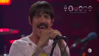 """Diego Verdaguer feat. Red Hot Chili Peppers """"La Ladrona"""""""
