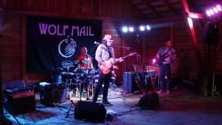 Wolf mail - Karniewo, 17.07.2016