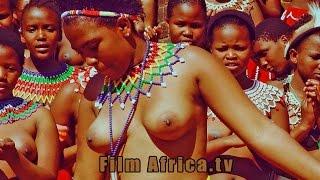 Virgin Test  - Zulu Girls width=