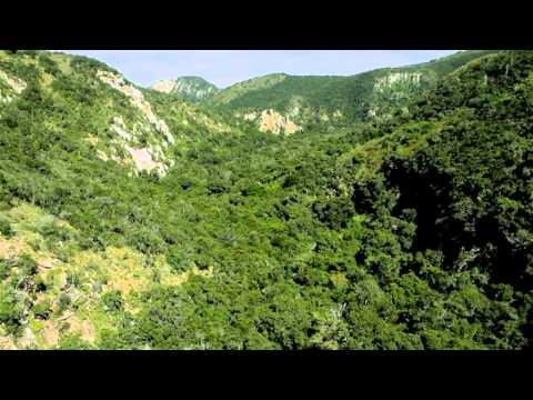 Addo Elephant National Park – Nelson Mandela Bay, Port Elizabeth, South Africa